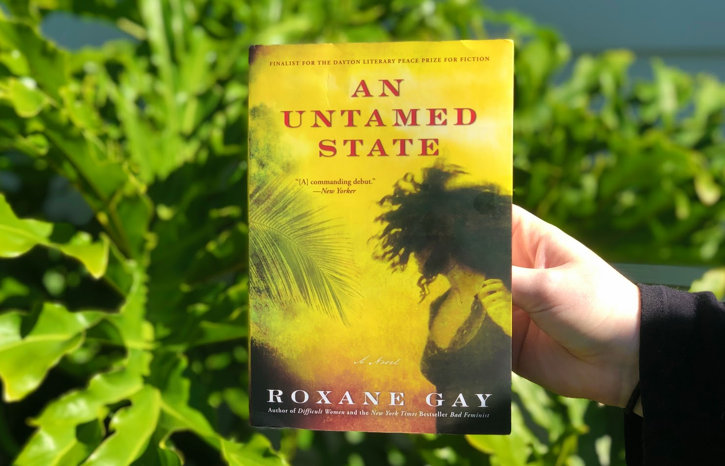 An Untamed State, Roxane Gay